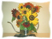 0783sunflower22